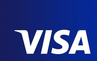 Visa Inc. Stock (V)