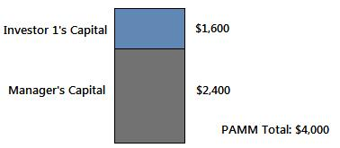 Investor and Manager Capital PAMM forex