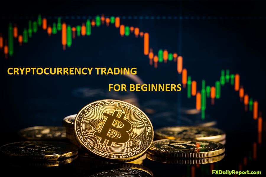cryptocurrency trading basics for beginners